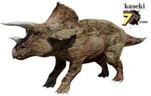 骨戦争!マーシュが発表したトリケラトプス